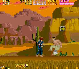 Ninja Kazan (World)