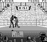 Kick Boxing, The (Japan)