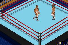 Fire Pro Wrestling 2 (U)(Venom)