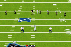 Madden NFL 2005 (U)(Venom)