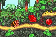 Donkey Kong Country (U)(Evasion)