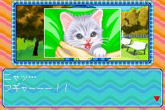 Nakayoshi Pet Advance Series 3 Kawaii Koneko (J)(Chakky)