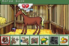 Pferd & Pony - Mein Pferdehof (E)(Rising Sun)
