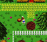 Conker's Pocket Tales (USA, Europe) (En,Fr,De)
