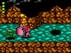 Battletoads (USA)