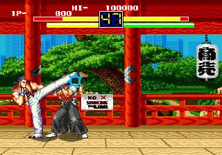 Art of Fighting (USA)