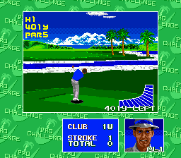Chi Chi's Pro Challenge Golf (USA)