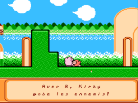 Kirby's Adventure (Canada)