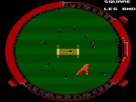 International Cricket (Australia) (Beta)