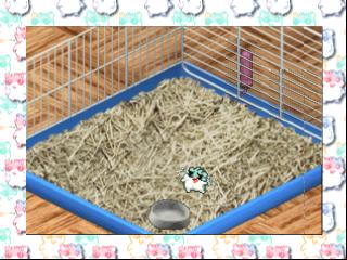 Hamster Monogatari 64 (Japan)
