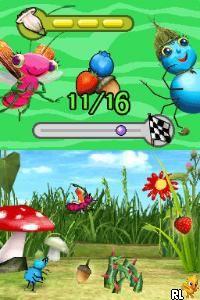 Miss Spider's Sunny Patch Friends - Harvest Time Hop and Fly (USA) (En,Fr,Es)