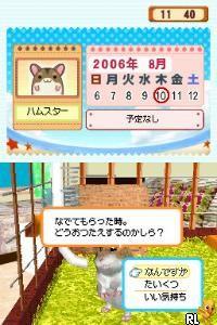 Love Love Hamster (Japan)