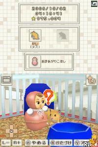 Hamster to Kurasou (Japan)