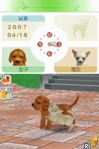 Nintendogs - Chihuahua & Chingudeul (Korea)