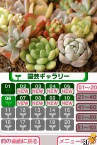 Hana Saku DS Gardening Life (Japan)
