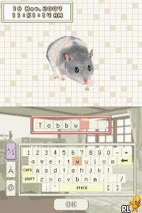 Hamsterz 2 (Europe) (En,Fr,De,Es,It,Nl) (Rev 1)