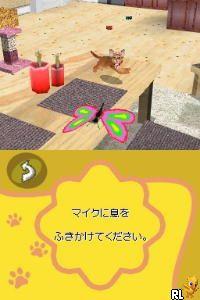 Love Cat Life (Japan)