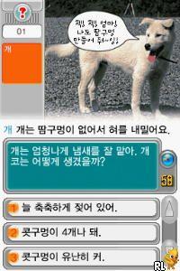 MagicQ DS (Korea)