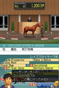 Derby Stallion DS (Japan)