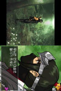 Play Nintendo Ds Ninja Gaiden Dragon Sword Korea Online In Your Browser Retrogames Cc