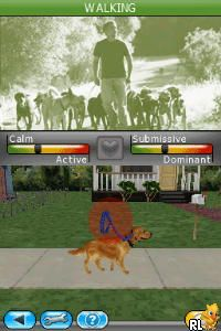My Dog Coach - Understand Your Dog with Cesar Millan (Europe) (En,Fr,Es)