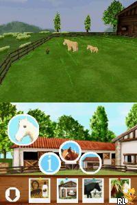 My Pet Pony (Europe) (En,Fr,De,Es,It)