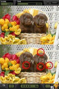 Finde die Unterschiede - Foto Frenzy (Europe) (En,Fr,De,Es,It)