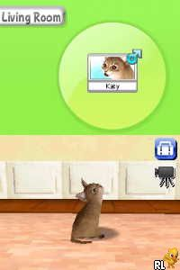 Petz - My Kitten Family (Europe) (En,Fr,De,Es,It,Nl,Sv,No,Da)