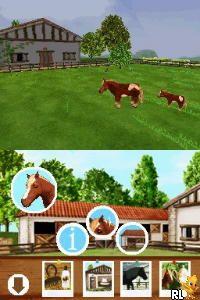 Discovery Kids - Pony Paradise (USA) (En,Fr,Es)