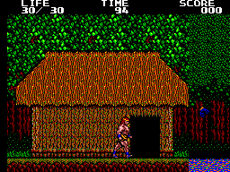 Danan - The Jungle Fighter (Europe)