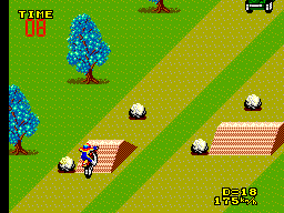 Enduro Racer (USA, Europe)