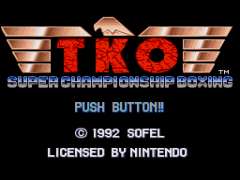TKO Super Championship Boxing (USA) (Sample)