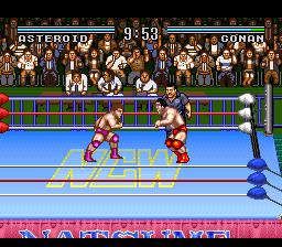 Natsume Championship Wrestling (USA)