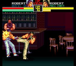 Art of Fighting (USA)