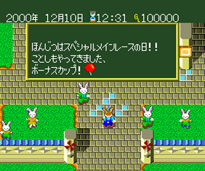Wallaby!! - Usagi no Kuni no Kangaroo Race (Japan)